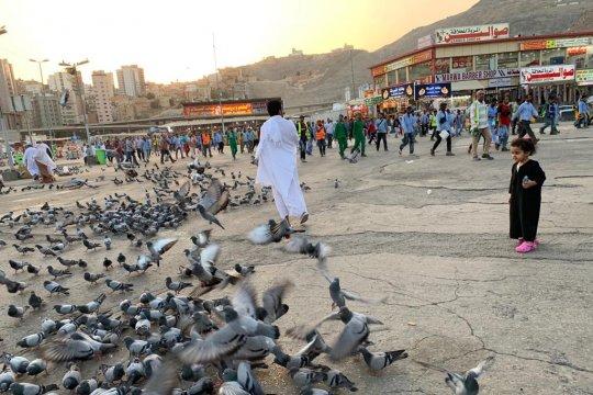 Jamaah diimbau kenali tiga terminal bus di sekitar Masjidil Haram