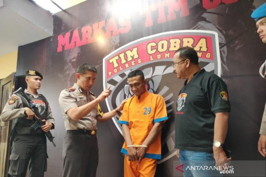 Tim Cobra Polres Lumajang menetapkan tiga tersangka pembalakan liar