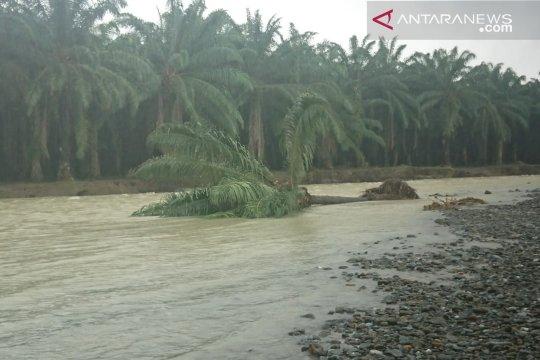 LSM : Eksploitasi SDA sebab utama banjir bandang di Banggai