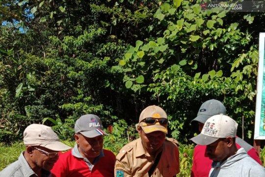 Penyelesaian batas Papua Barat-Malut tunggu kesiapan Kemendagri