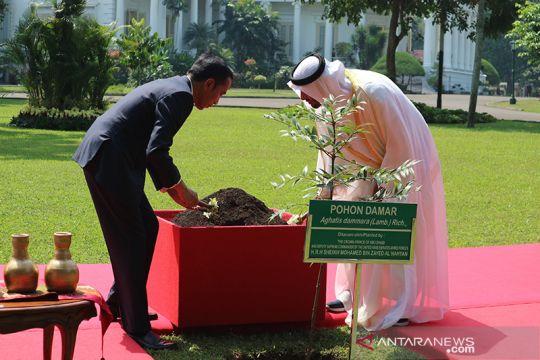 Presiden Joko Widodo bersama Putra Mahkota Abu Dhabi menanam pohon damar di halaman Istana Bogor