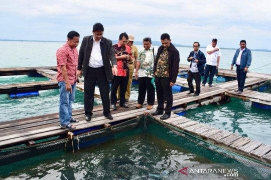 Kemenko Maritim identifikasi pembangunan di Natuna