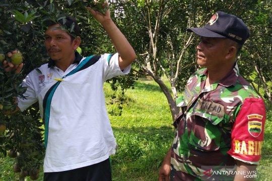 Desa Balung menuju sentra jeruk Riau