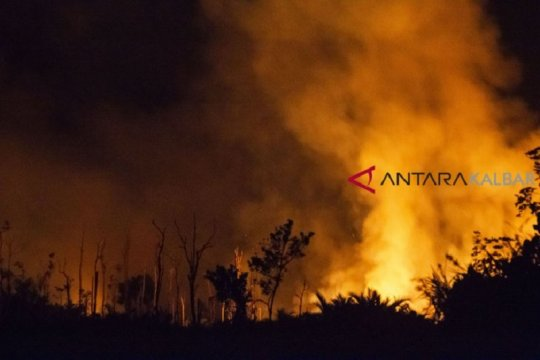 Perusahaan sawit di Semitau disegel terkait kebakaran hutan-lahan