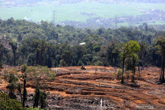 Hutan alam perlu diperluas untuk capai target penurunan emisi