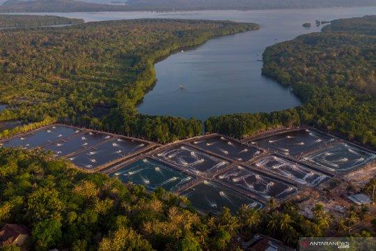 UNESCO tetapkan Karimunjawa Jepara sebagai cagar biosfer