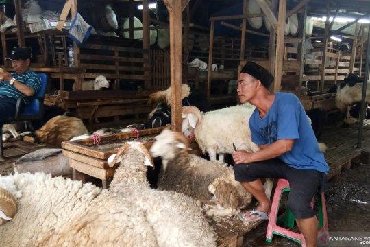 Dinas KPKP gandeng Dharma Jaya untuk pemotongan hewan kurban