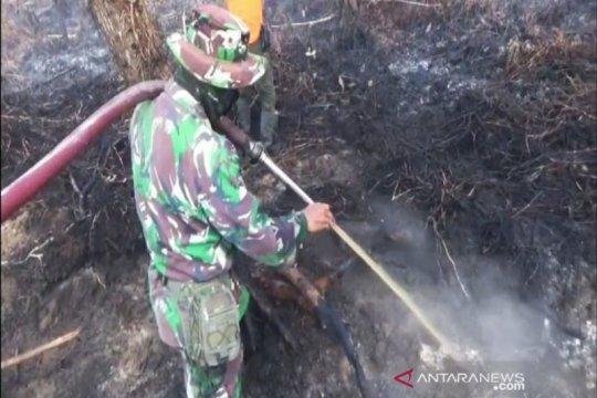 BMKG Sampit :  kebakaran lahan berpotensi sangat sulit dikendalikan