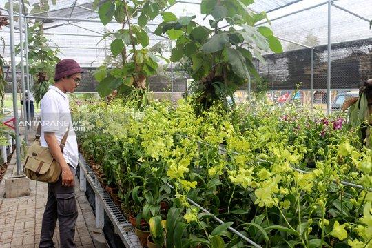 Pembangunan Wisata Kebun Anggrek Surabaya masuki tahap akhir