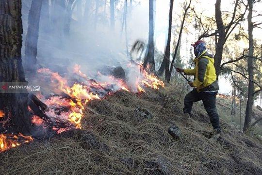 BPBD sebut semua pendaki selamat pada insiden kebakaran Gunung Arjuno