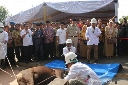 Anggota DPRD DKI: penggunaan besek bambu harus berkelanjutan