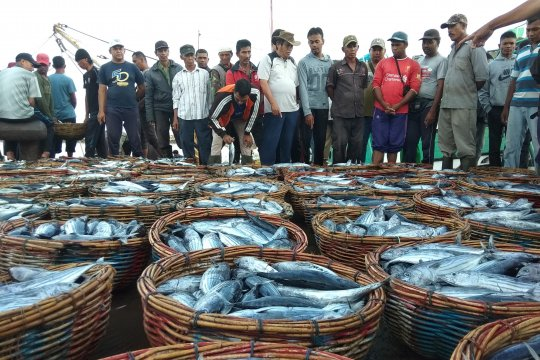 Aceh kekurangan gudang pendingin ikan