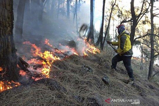 Pemadaman api Gunung Arjuno kerahkan helikopter