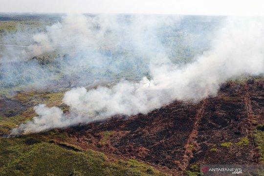 Akademisi ingatkan buka lahan dengan membakar miliki risiko tinggi