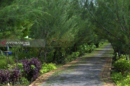 Tingkatkan kualitas udara, Yogyakarta tambah 5 ruang terbuka hijau