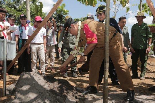 Pemprov Kalsel berupaya selamatkan pohon langka Kalimantan