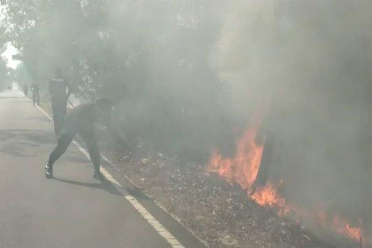 Kebakaran lahan gambut di kota Palangka Raya meluas