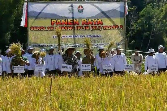 SLI berhasil tingkatkan produksi panen padi