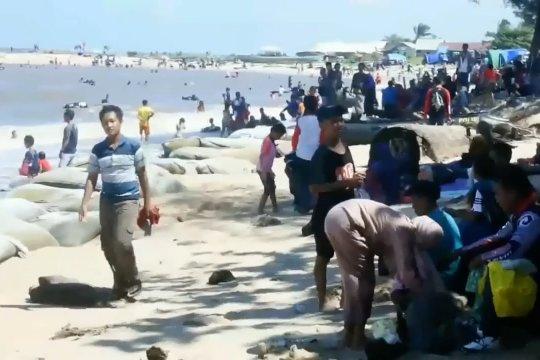Tanggul permanen akan dibangun di Pantai Ujung Pandaran