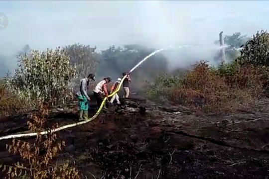 BPBA ajak seluruh elemen masyarakat jaga hutan