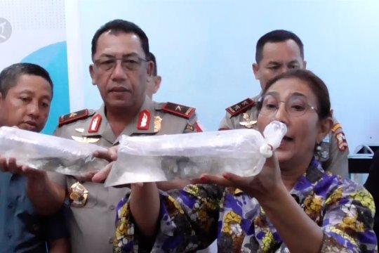 Penyelundupan benih lobster senilai Rp 143 miliar