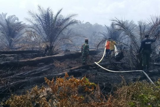 Lima titik panas terkonsentrasi di Aceh Barat