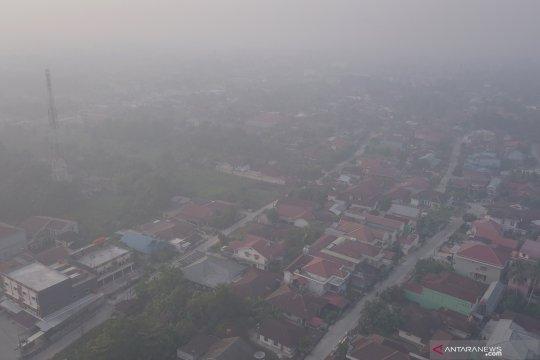 Kepala BNPB yakin pembakar hutan dan lahan bisa disadarkan