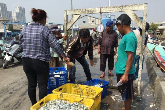 Nelayan Muara Angke keluhkan tangkapan kurang akibat tumpahan minyak