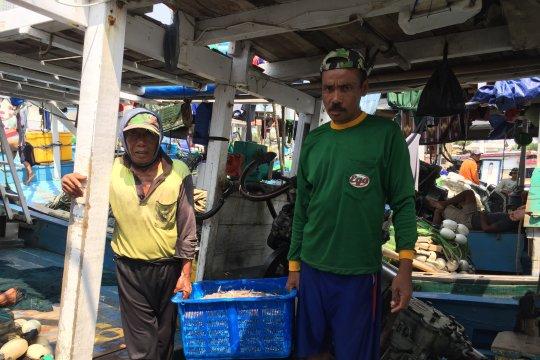 Nelayan sebut tumpahan minyak tak pengaruhi ikan di Kepulauan Seribu