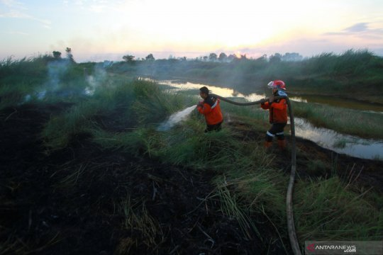 Izin pakai kawasan hutan di Kalsel mencakup area seluas 56.243 hektare