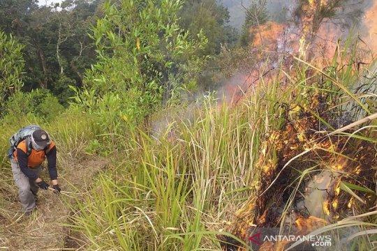 BPBD: Tujuh titik bara api di Gunung Arjuno belum padam