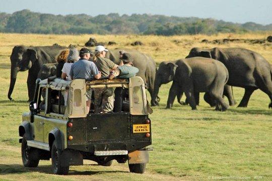 Sri Lanka berikan fasilitas bebas visa bagi wisatawan Indonesia