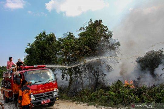 Kebakaran lahan gambut di Pekanbaru