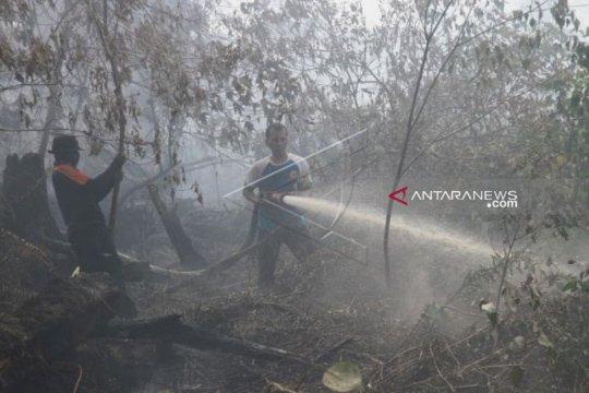 Kebakaran lahan di Aceh Barat semakin meluas akibat musim kemarau