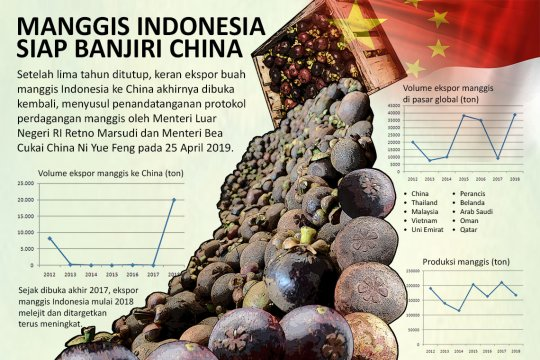 Manggis Indonesia siap banjiri China