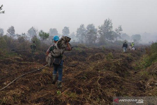 Enam kecamatan di Indragiri Hilir dilanda kebakaran lahan