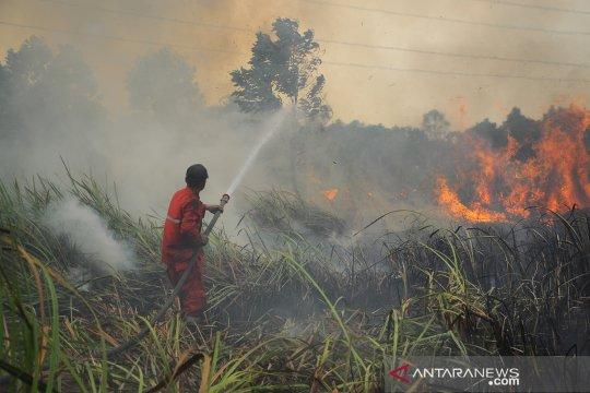 Operasi pembasahan gambut Sumsel rawan terbakar ditingkatkan BRG