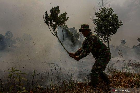 Status siaga darurat karhutla Riau tak diperpanjang, sebut Wadansatgas