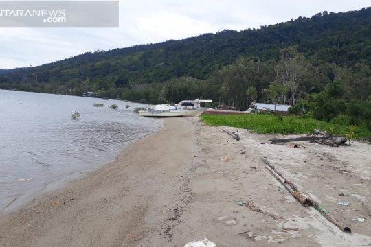 Lahan kritis di Teluk Wondama diperbaiki dengan penanaman mangrove