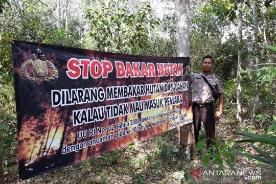 BNPB Bangka Tengah Catat 50 kasus kebakaran hutan