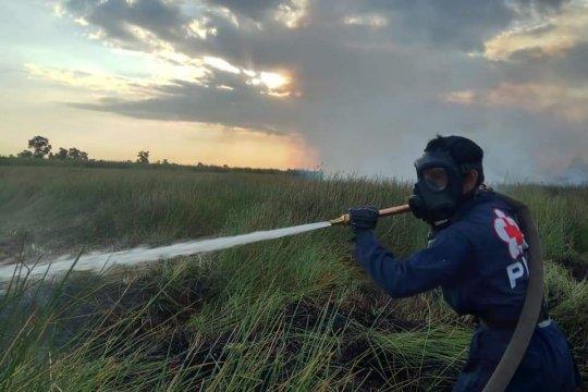 PMI kirim 40.000 masker ke lokasi karhutla di Kalimantan