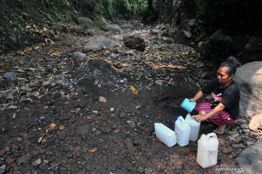 BPBD prediksi kekeringan di Bogor terus meluas hingga akhir Oktober