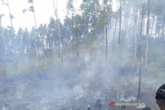 BMKG: 16 titik panas muncul di wilayah Aceh