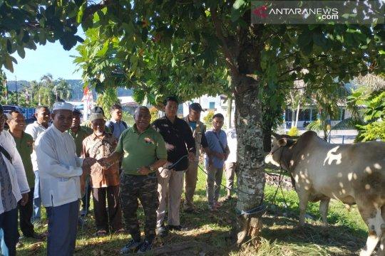 Gubernur Papua Barat serahkan 63 hewan kurban
