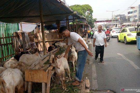 Pejalan kaki kritisi Pemkot Jakpus terkait pedagang hewan di trotoar