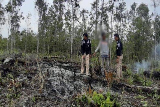 Polisi tangkap seorang terduga pembakar lahan di Barito Selatan