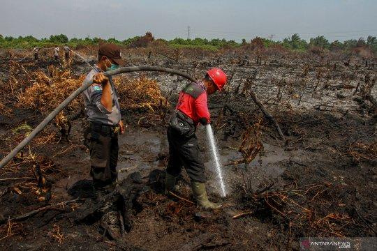 Polres Rohil kerahkan Brimob atasi Karhutla di pesisir Riau