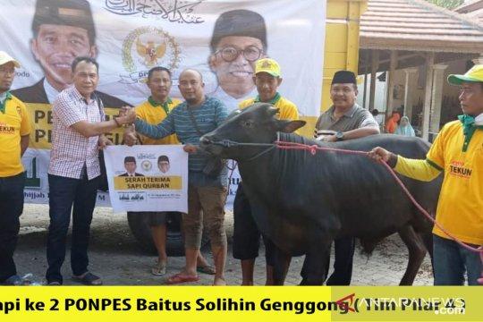 Misbakhun berqurban 16 ekor sapi di daerah pemilihannya