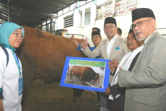 Ridwan Kamil imbau pembagian daging kurban tak gunakan plastik