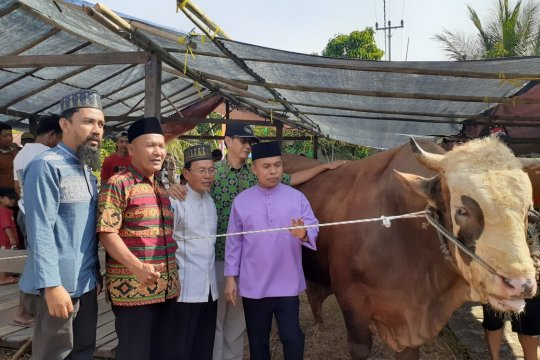 Bupati Sambas serahkan sapi kurban Presiden RI ke Dusun Sembuai